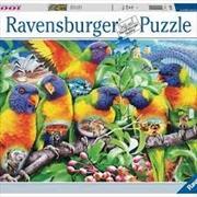 Land Of The Lorikeet 1000pc Puzzle | Merchandise