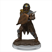 Dungeons & Dragons - Icons of the Realms Premium Male Human Fighter | Games