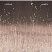 Grains   Vinyl