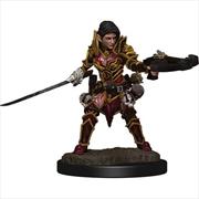 Pathfinder - Elf Paladin Female Premium Figure   Games