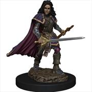 Pathfinder - Human Bard Female Premium Figure   Games