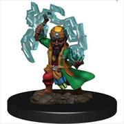 Pathfinder - Gnome Sorcerer Male Premium Figure   Games