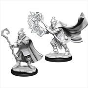 Hobgoblin Wizard And Druid U/P | Games