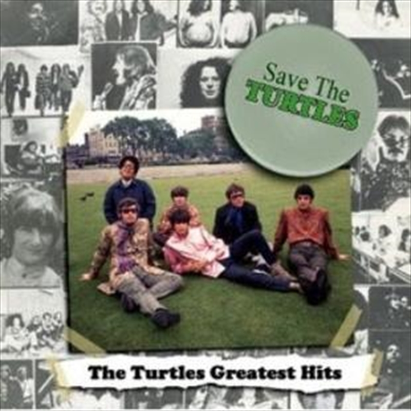 Save The Turtles The Turtles Greatest Hits Pop Cd Sanity