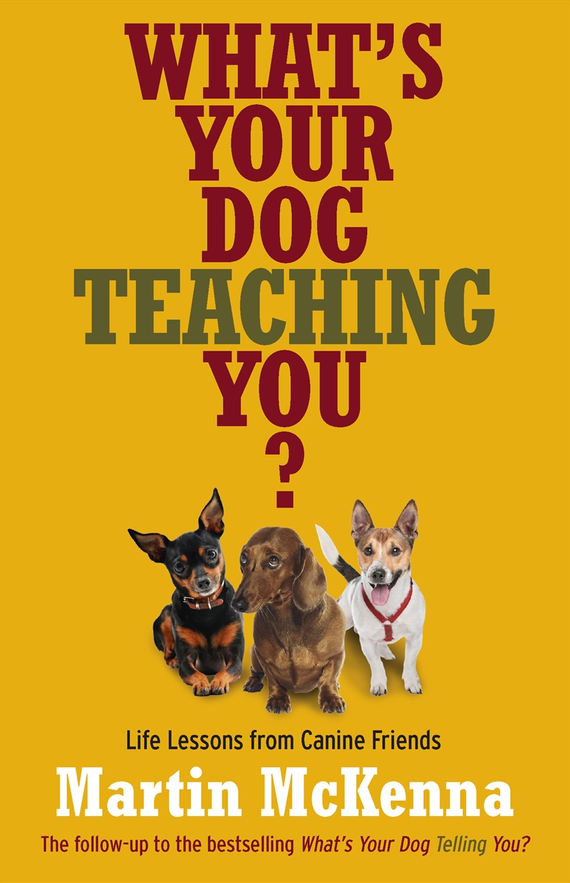 Whats Your Dog Teaching You | Books