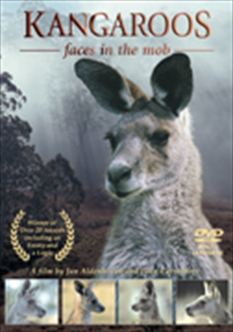 Kangaroos: Faces In The Mob | DVD