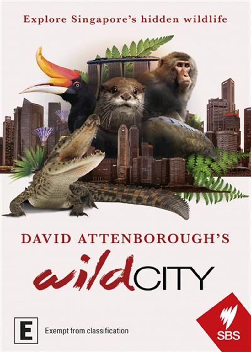 David Attenborough's Wild City   DVD