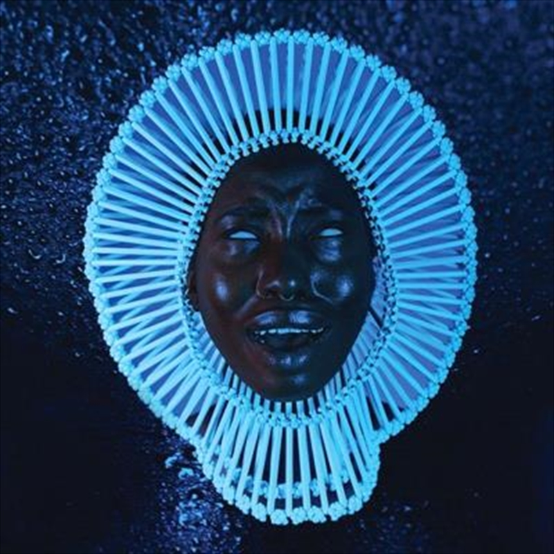 Awaken, My Love! | CD