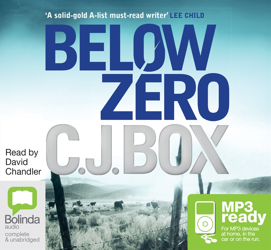 Below Zero   Audio Book