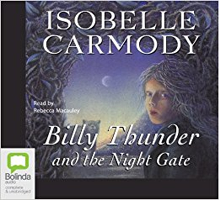 Billy Thunder And The Night Gate   Audio Book
