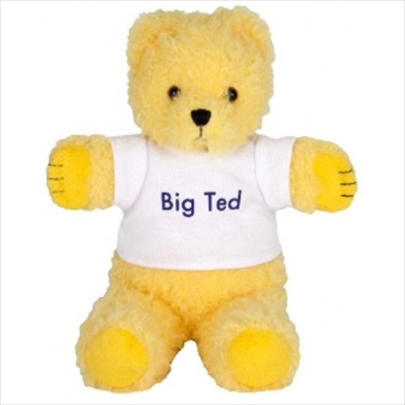 Big Ted Mini Beanie 18cm | Toy