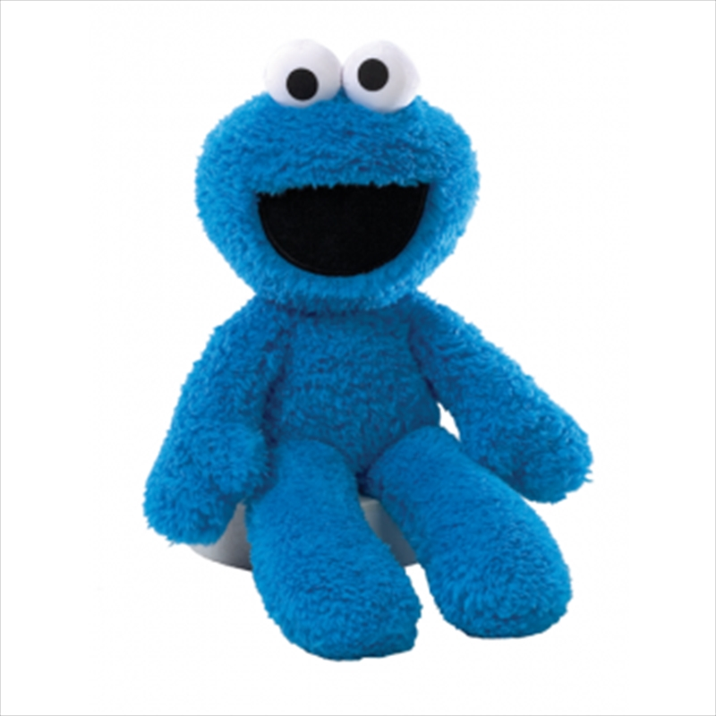 Cookie Monster Plush 26cm | Toy