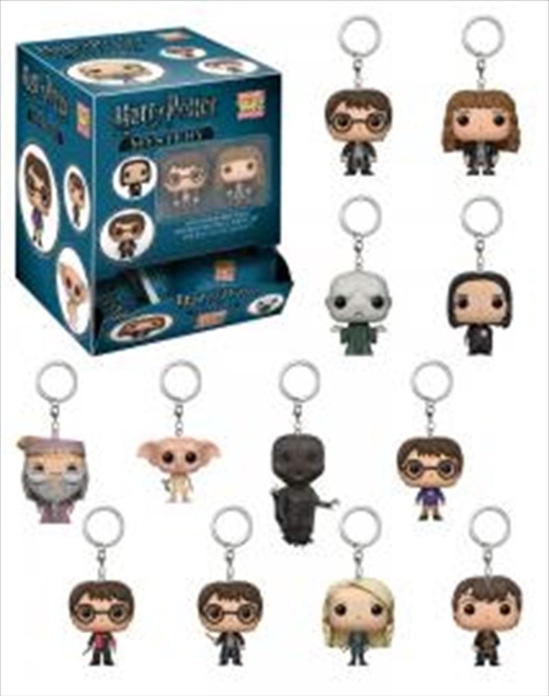 Harry Potter - Pocket Pop! Keychain Blind Bag   Accessories