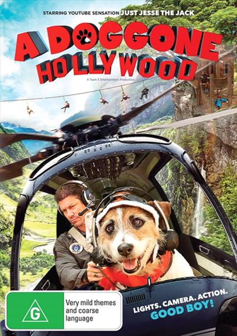A Doggone Hollywood | DVD