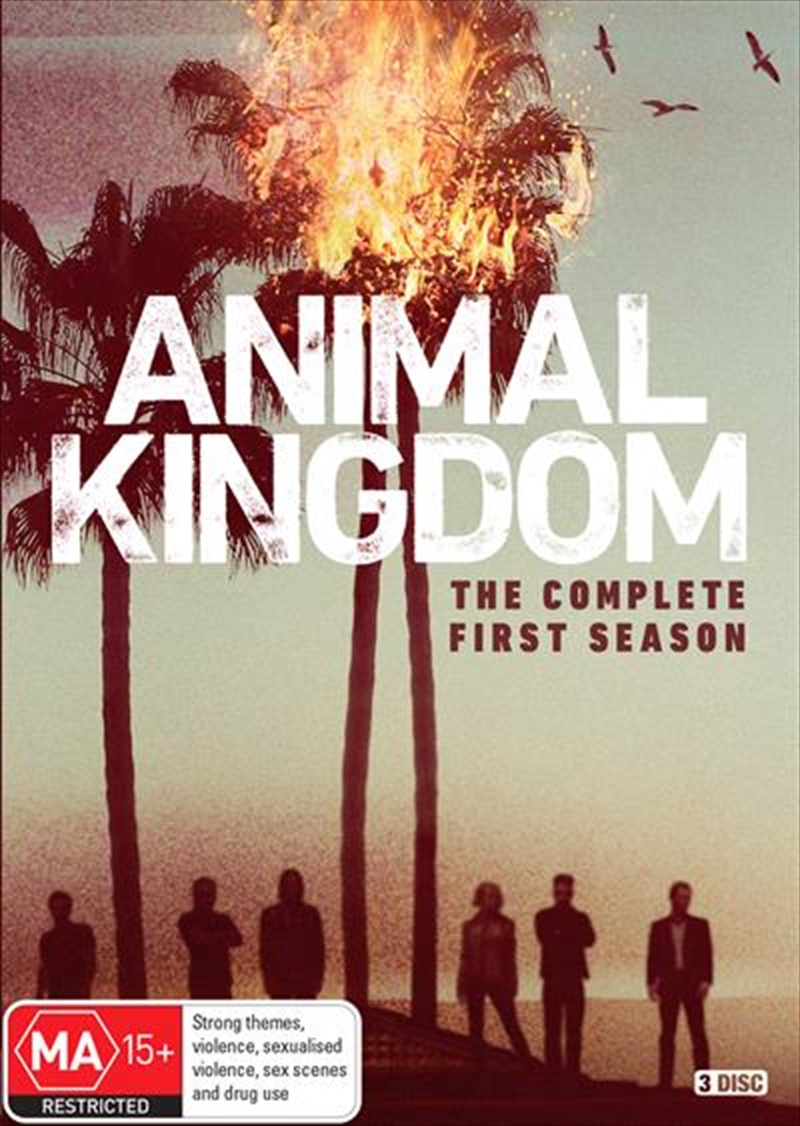 Animal Kingdom season 1 Download Complete Episodes