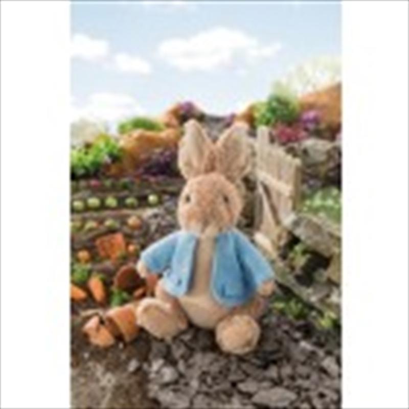 Peter Rabbit Plush 30cm | Toy