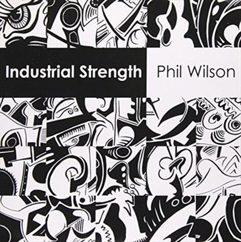 Industrial Strength   Vinyl