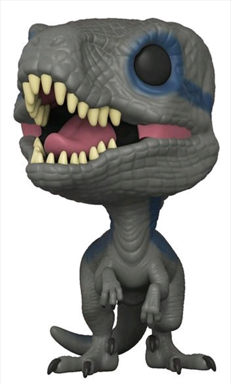 Jurassic World 2: Fallen Kingdom - Blue Pop! Vinyl | Pop Vinyl