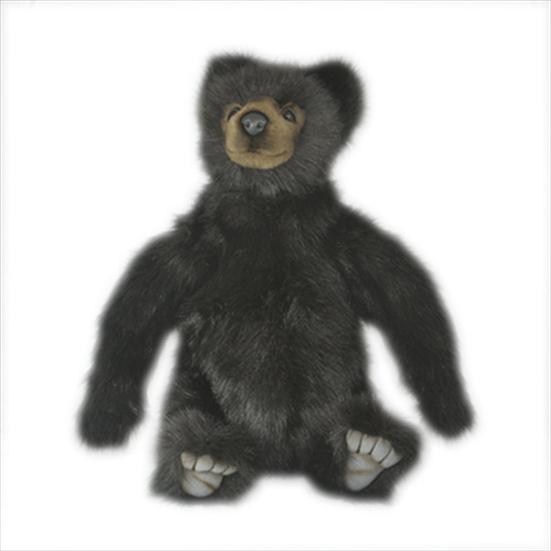 Brown Bear - Medium 46cm | Toy