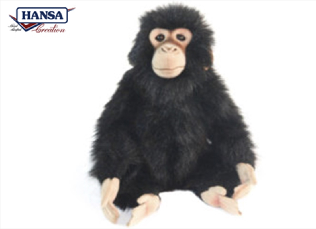 Chimp 24cm | Toy