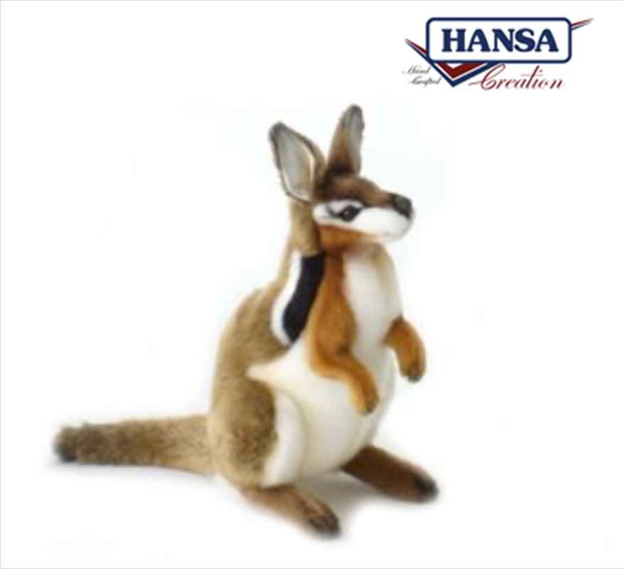 Cresent Nailtail Wallaby 25cm | Toy