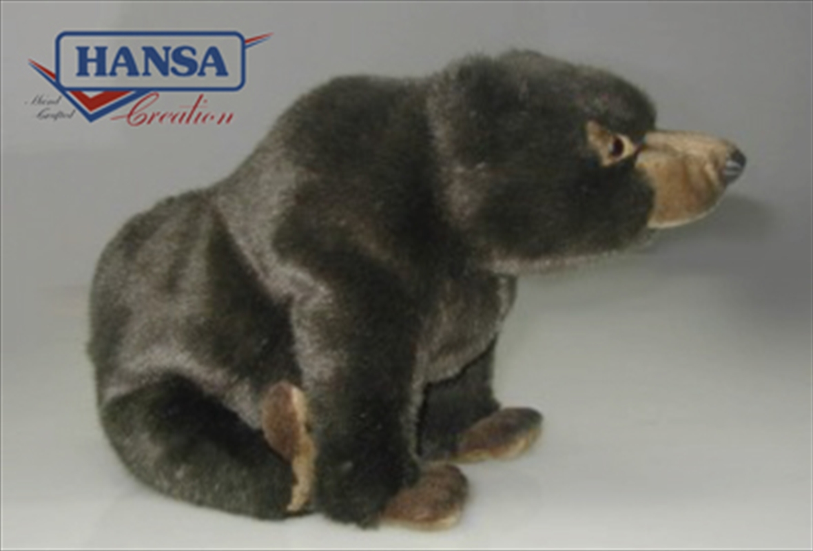 Grizzly Bear 38cm | Toy