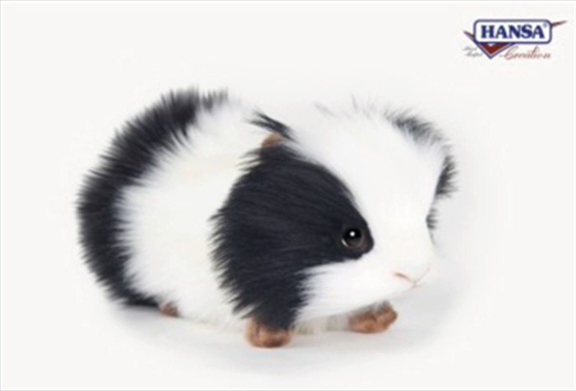 Guinea Pig Black And White 19cm | Toy