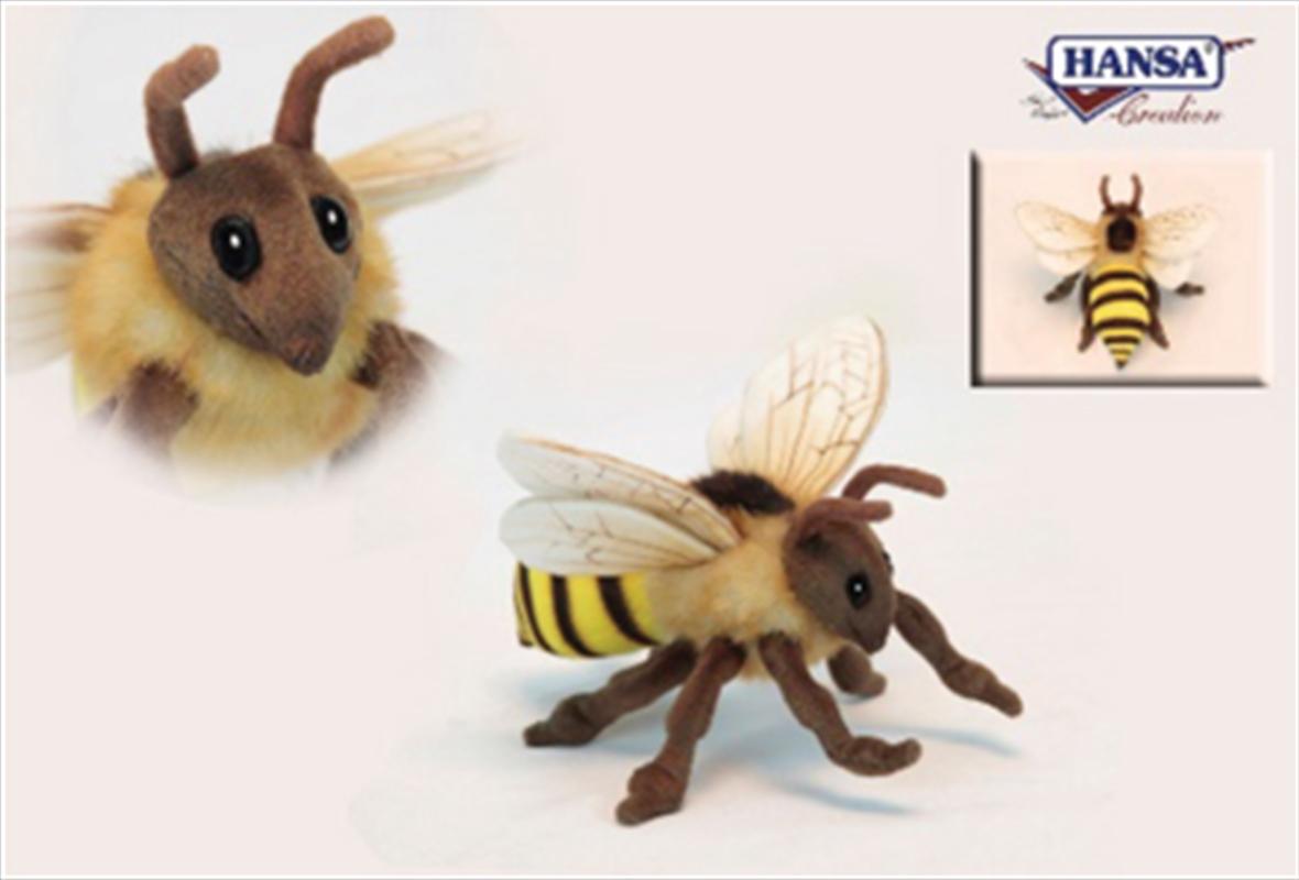 Honey Bee 22cm   Toy