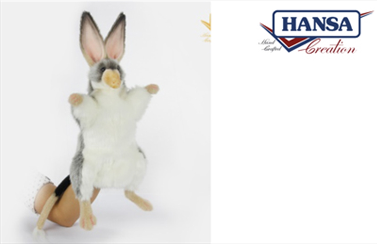 Puppet Bilby 35cm | Toy