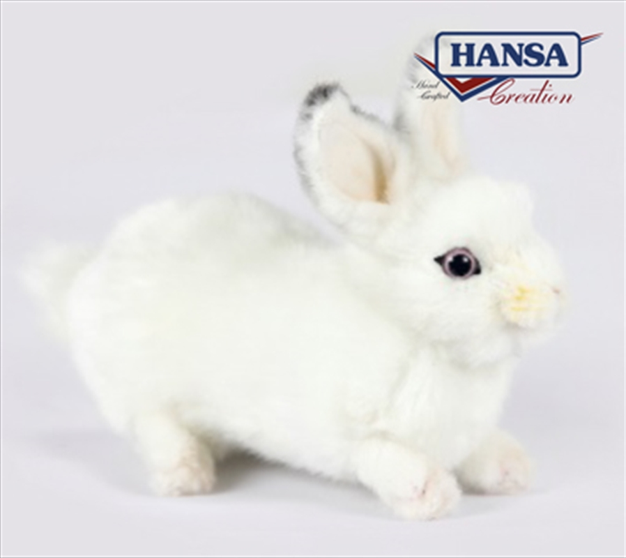 Rabbit 20cm | Toy
