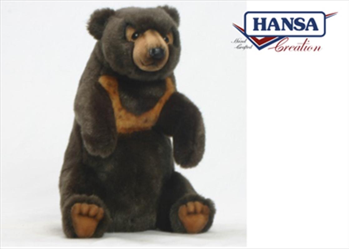 Sun Bear Sitting 23cm | Toy