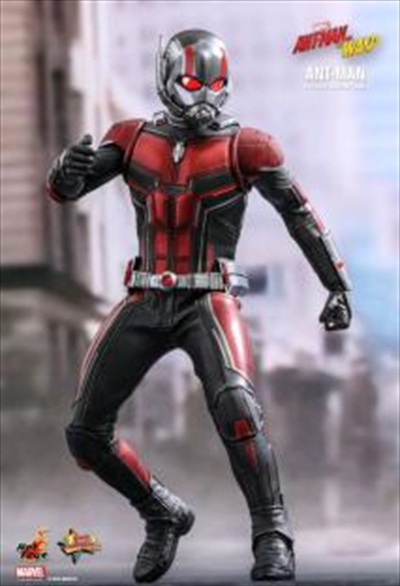 Ant Man 1 To 6 Scale Action | Merchandise