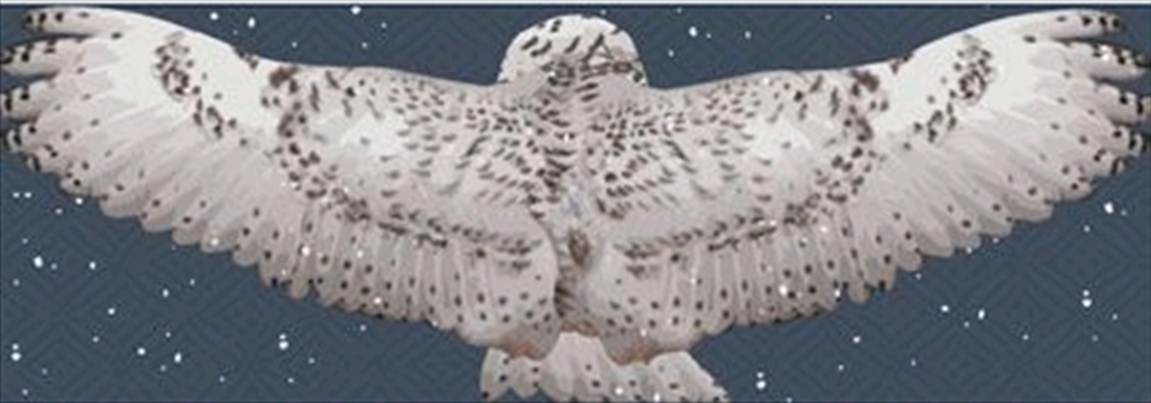 Harry Potter - Hedwig Wing Scarf | Apparel