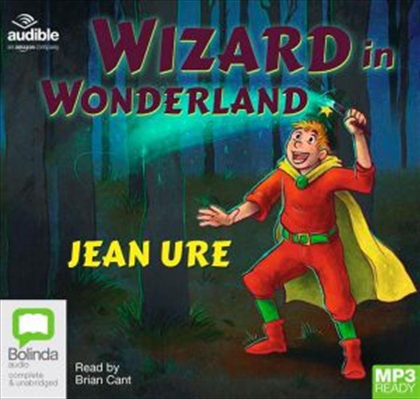 Wizard In Wonderland   Audio Book