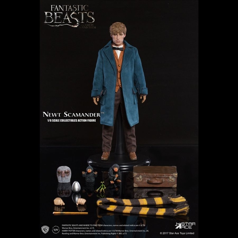 Fantastic Beasts and Where To Find Them - Newt Scamander 1:6 Scale Action Figure | Merchandise
