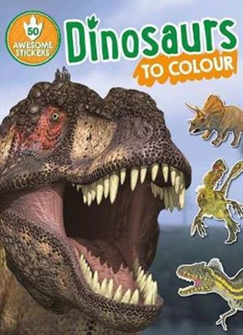 Dinosaurs to Colour | Paperback Book