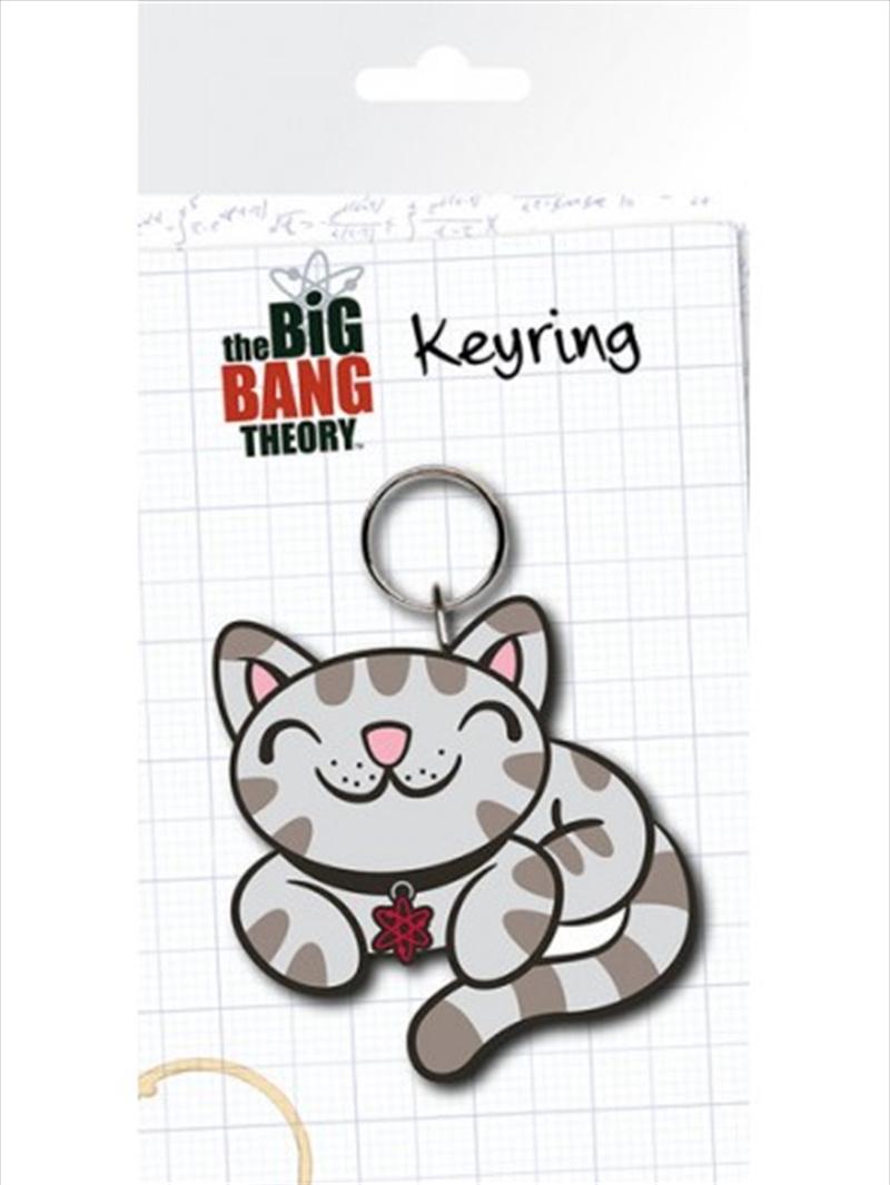 Big Bang Theory Kitty Keyring | Accessories
