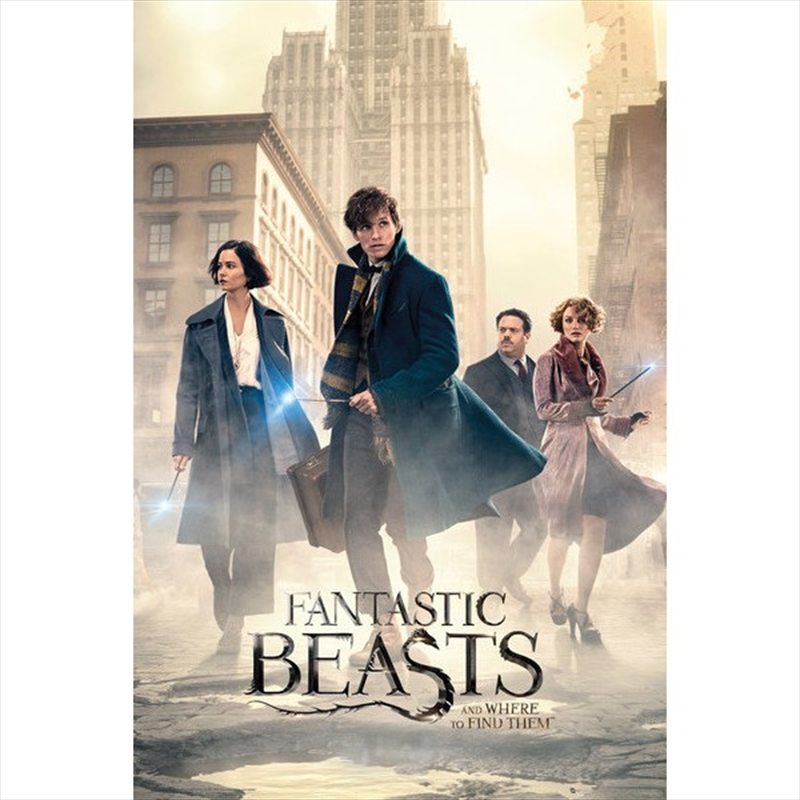 Fantastic Beasts and Where to Find Them Street | Merchandise