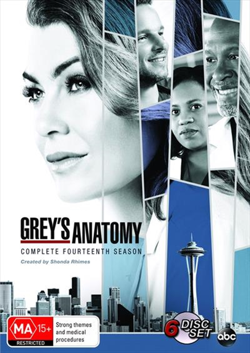 Grey's Anatomy - Season 14 | DVD