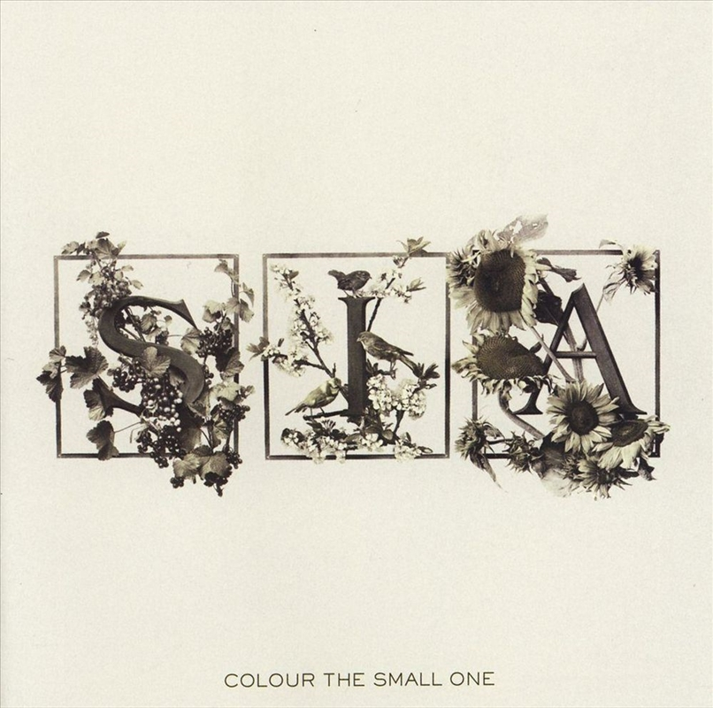 Colour The Small One | CD