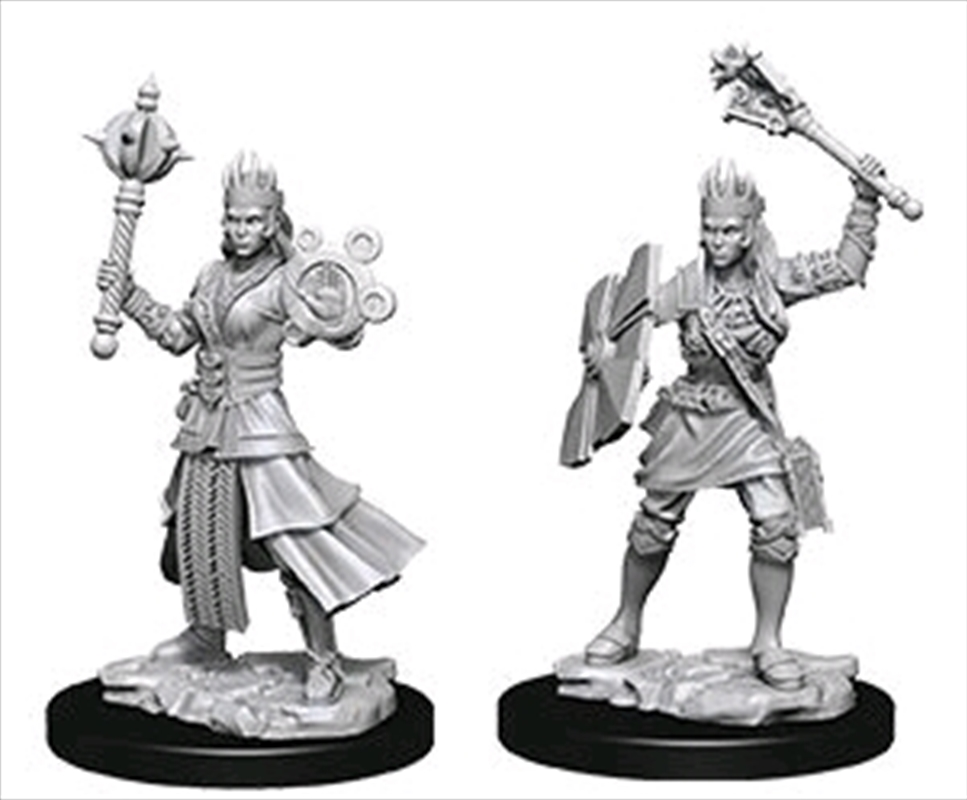 Dungeons & Dragons - Nolzur's Marvelous Unpainted Minis: Female Human Cleric | Games