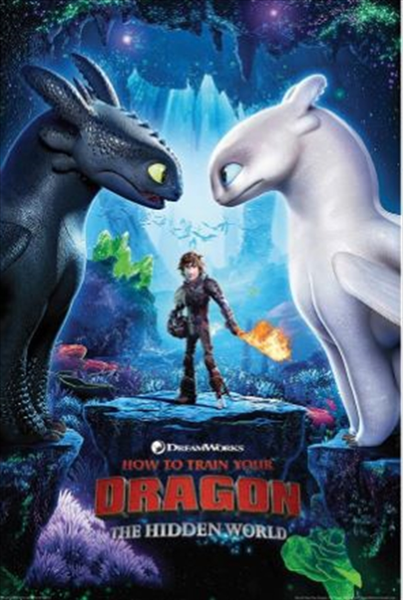 How To Train Your Dragon 3 - One Sheet | Merchandise