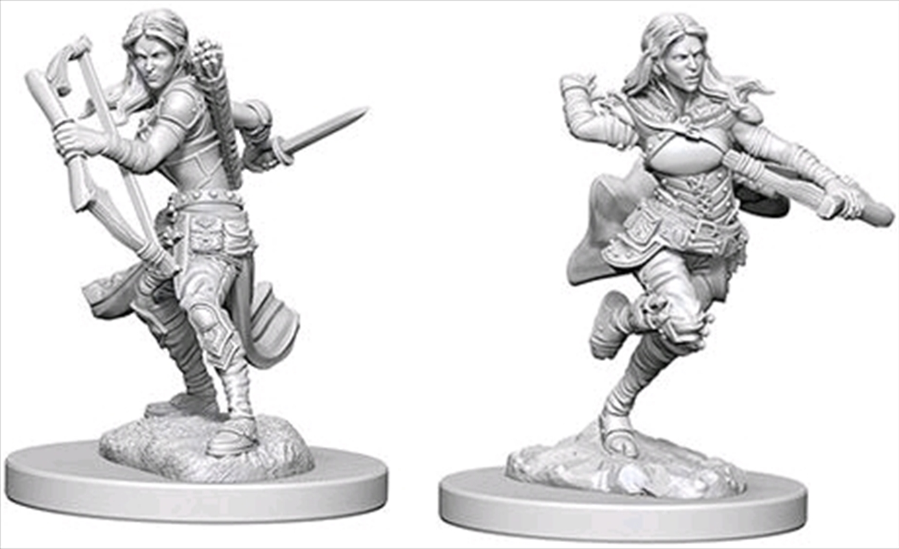 Dungeons & Dragons - Nolzur's Marvelous Unpainted Minis: Air Genasi Female Rogue | Games
