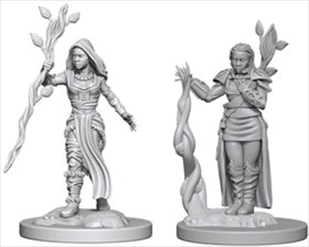 Dungeons & Dragons - Nolzur's Marvelous Unpainted Minis: Human Female Druid | Games