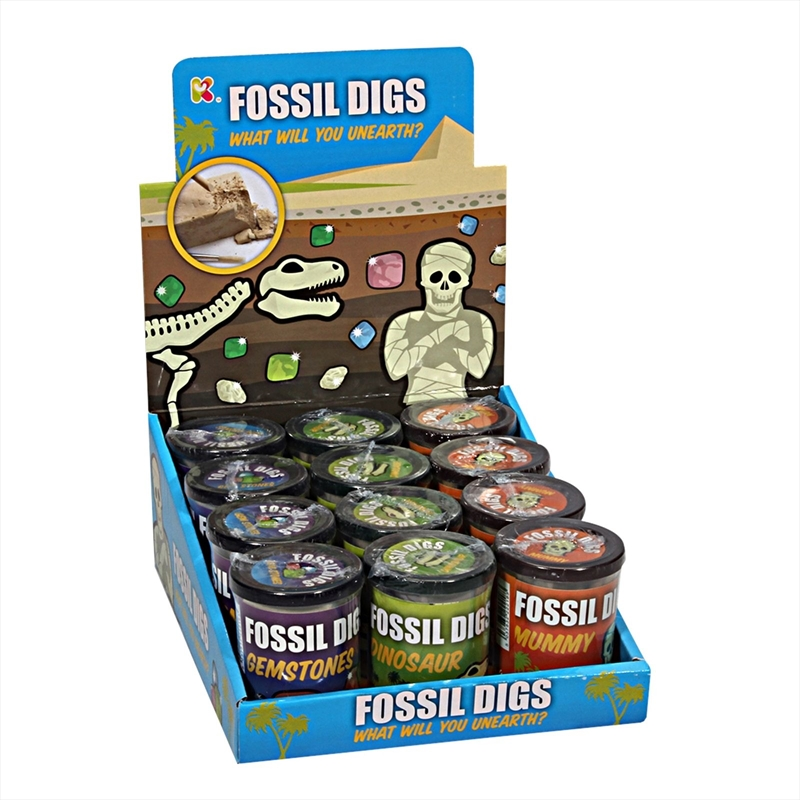 Assorted Fossil Dig In Tub | Miscellaneous
