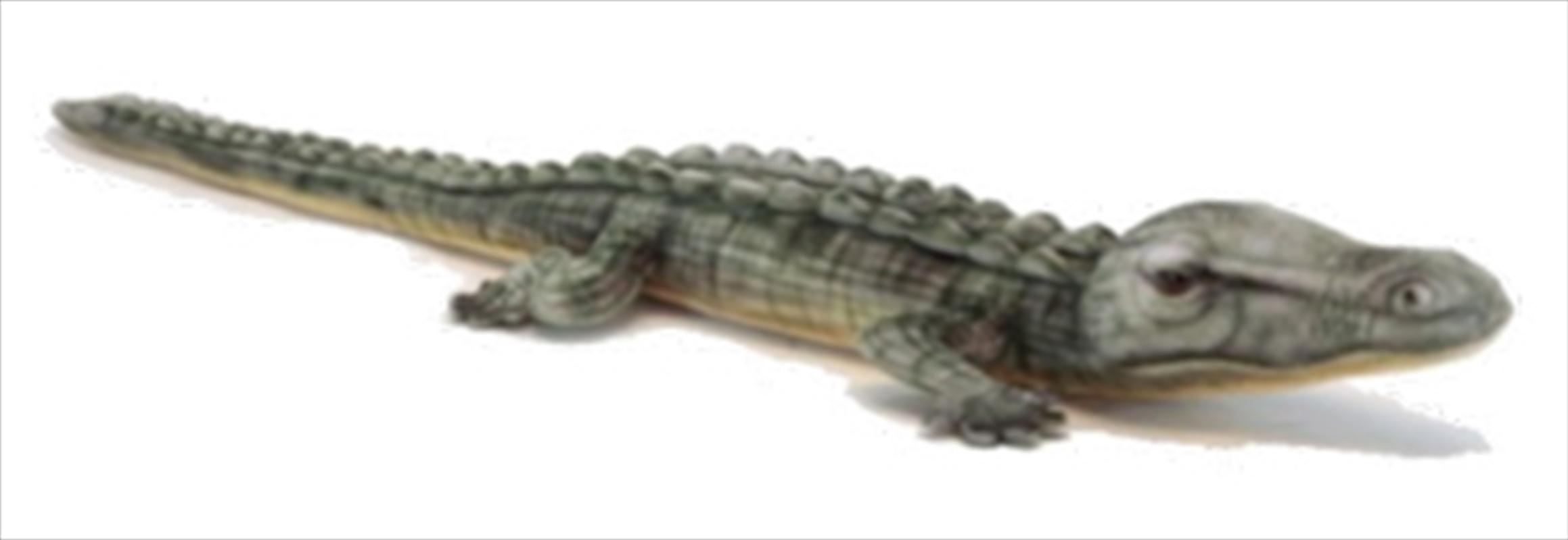 Crocodile Salt Water 70cm L | Toy