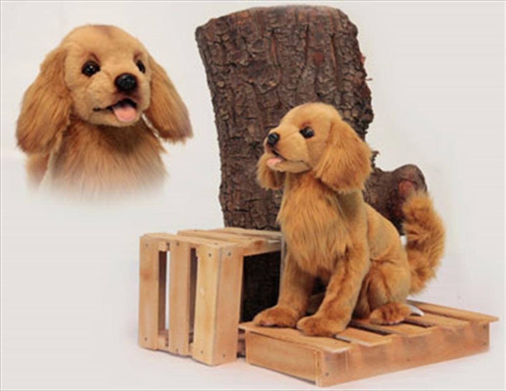 Golden Retriever Brown 28cm H | Toy