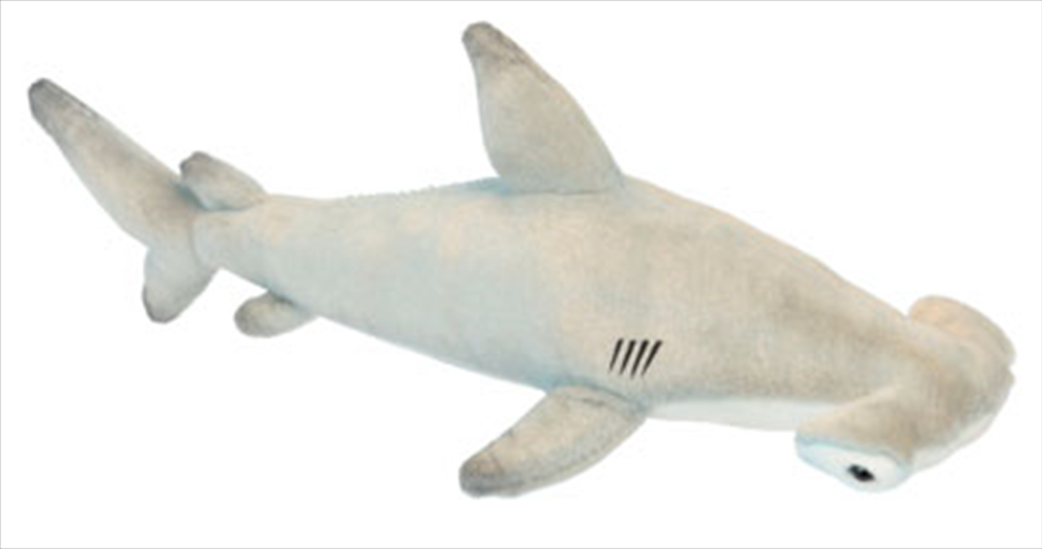 Hammerhead Shark 60cm L   Toy