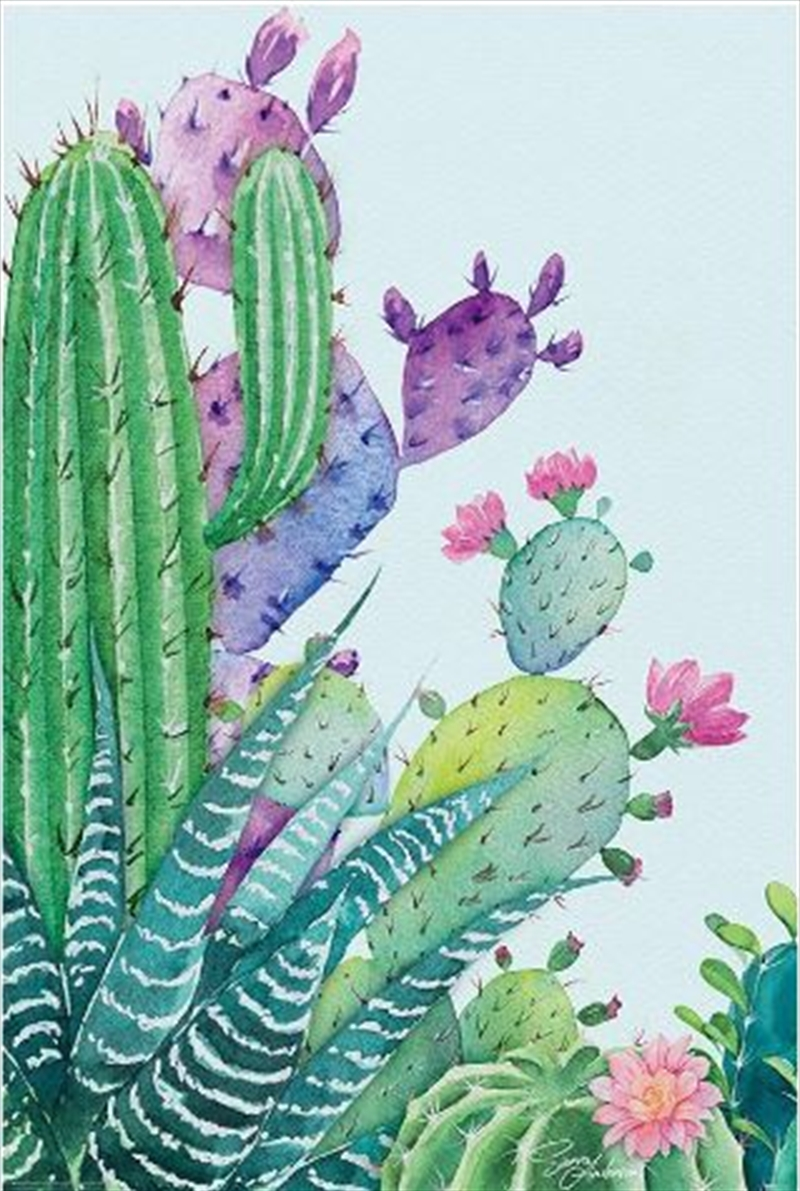 Sierra Anderson - Watercolour Succulents Poster | Merchandise