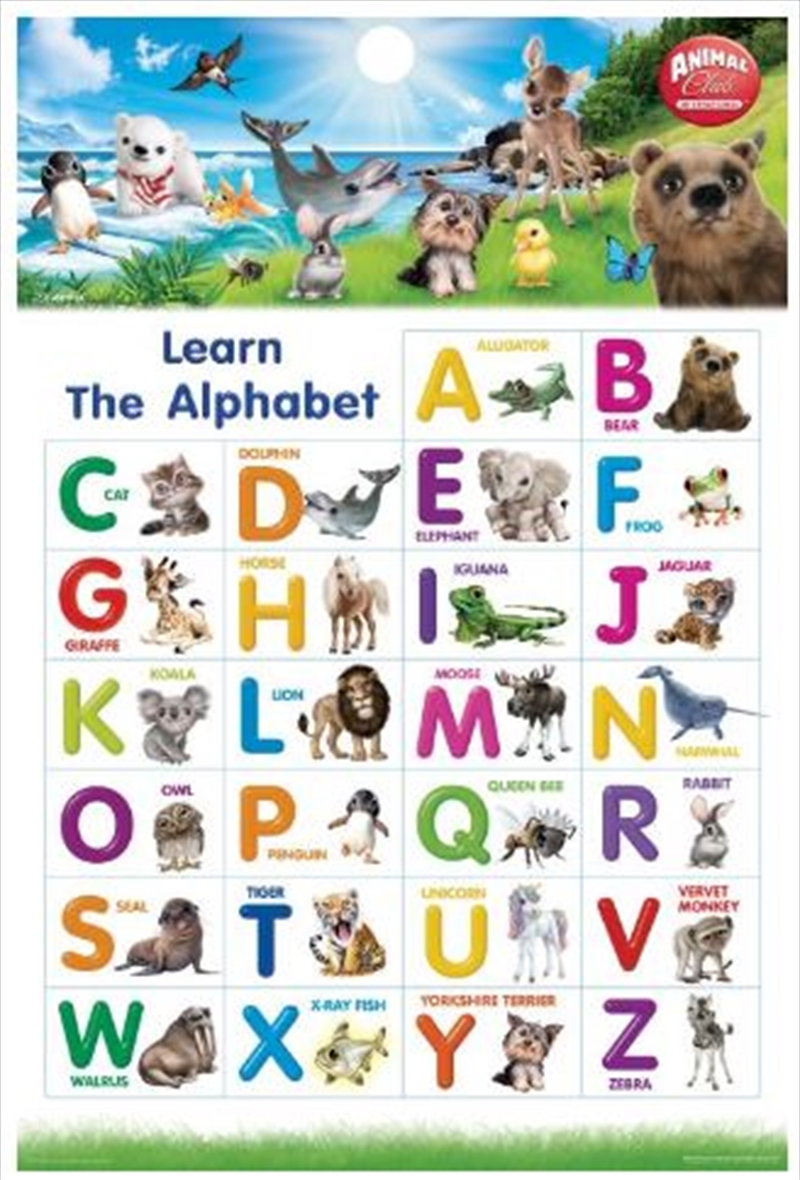 Animal Club - Alphabet Poster   Merchandise